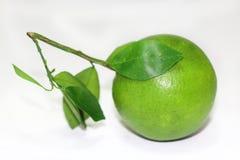 Zielona pomarańcze z liśćmi Obraz Stock