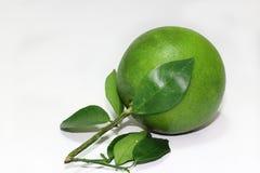 Zielona pomarańcze z liśćmi Zdjęcia Stock