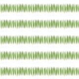 Zielona prosta zielona trawa paskuje kartka z pozdrowieniami świeżości herbacianą roślinność odizolowywającą na białego tła bezsz Obrazy Stock