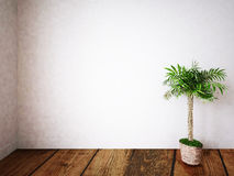 Zielona roślina w pokoju ilustracja wektor
