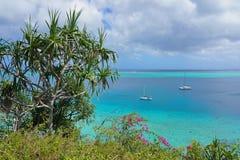 Zielona roślinność i błękitne wody tropikalna laguna Zdjęcie Royalty Free