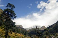 Zielona roślinność i halny szczyt Fotografia Royalty Free