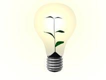 zielona roślina ilustracji