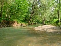 zielona rzeka Zdjęcie Royalty Free