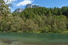 zielona rzeka Obraz Royalty Free