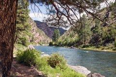 Zielona rzeka, lokalizować w westernie Stany Zjednoczone, jest ch Zdjęcia Stock