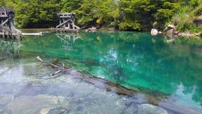 Zielona rzeka na sposobie 7 jezior Bariloche Argentyna zbiory