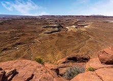 Zielona rzeka przegapia w Canyonlands parku narodowym obrazy royalty free