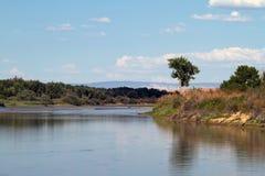 Zielona rzeka w Ouray obywatela rezerwacie dzikiej przyrody Obrazy Stock