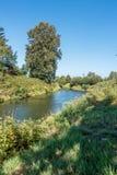 zielona 2 rzeki Obraz Stock