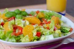 Zielona sałatka z czerwonym pieprzem i świeżą pomarańcze Zdjęcia Stock