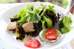 Zielona sałatka z truskawkowymi kawałkami Zdjęcia Stock