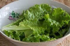 zielona sałata miska fotografia stock