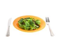 zielona sałatka Obrazy Stock