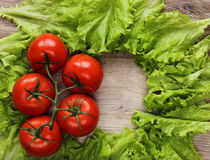 Zielona sałatka i pomidory na drewnianej teksturze Obraz Stock