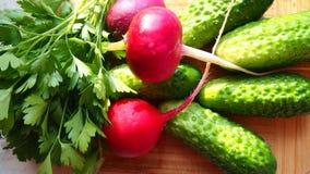 Zielona sałatka organicznie Fotografia Stock