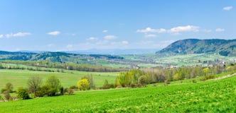 zielona scena Obraz Stock