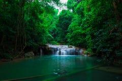 Zielona scena przy Erawan siklawą, Erawan park narodowy Obraz Stock