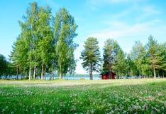 Zielona sceneria drzewa i łąka blisko jeziora w lecie Zdjęcia Royalty Free