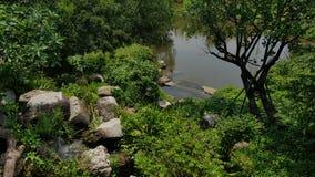 Zielona sceneria z rockową siklawą Obraz Royalty Free