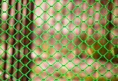 Zielona siatka na ogrodzeniu jako tło Obrazy Stock