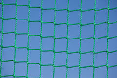 Zielona sieć Fotografia Royalty Free