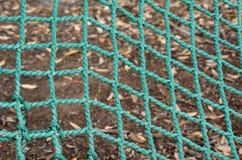 Zielona sieć Zdjęcia Royalty Free