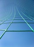 zielona sieć Obrazy Stock
