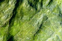 Zielona skała Ja Obrazy Royalty Free