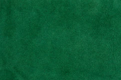 Zielona skóra Obrazy Stock