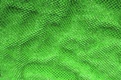 zielona srebna siatki tkanina z tkaną kruszcową nicią, enjoy obraz royalty free