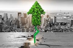 Zielona strzała wskazuje upwards - 3d rendering Obraz Stock
