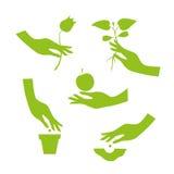 Zielona sylwetka żeńska ręka wykonuje sezonu ogródu pracy Zdjęcie Stock