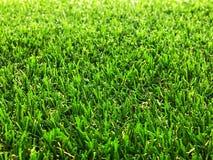 Zielona sztuczna trawa, kopia astronautyczny układ obrazy stock