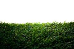 Zielona sztuczna trawa na bielu zdjęcia stock