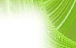 zielona tło miękka część Obraz Stock