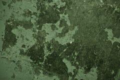 Zielona tekstura Zdjęcia Royalty Free