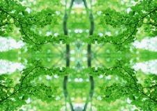 Zielona tekstura   Kwiecisty wzór   Projekta element   Textured tło obrazy stock