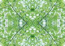 Zielona tekstura   Kwiecisty wzór   Projekta element   Textured tło fotografia stock