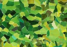 Zielona tekstura poszarpany papier Fotografia Royalty Free