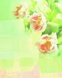 Zielona tekstura z kwiatów tulipanami Obraz Stock