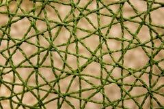 Zielona tkaniny sieć Obraz Royalty Free