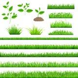 Zielona Trawa ilustracji