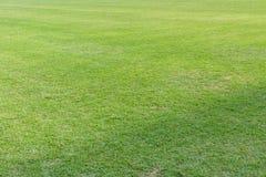 Zielona trawa boisko do piłki nożnej Zdjęcie Royalty Free