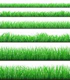 Zielona trawa graniczy set odizolowywającego na białym tle royalty ilustracja