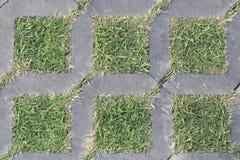 Zielona trawa i betonowy blok Zdjęcie Royalty Free