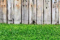 Zielona trawa i drewniana ściana Fotografia Stock