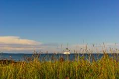 Zielona trawa i morze bałtyckie Zdjęcie Royalty Free