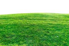 Zielona trawa na kopu Obrazy Royalty Free