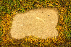 Zielona trawa na tło cemencie w parku zdjęcie stock